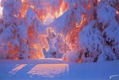 крым завалило снегом дым: 14 тыс изображений найдено в Яндекс.Картинках