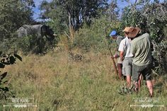The close encounters that can be experienced on the canoe trail | Selinda Canoe Trail