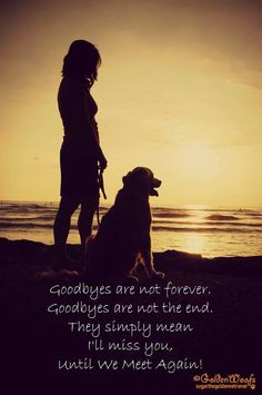 Until we meet again. Good thing all dogs go to Heaven :) Love My Dog, Puppy Love, Goodbyes Are Not Forever, Pet Loss Grief, Dog Poems, Pet Remembrance, We Meet Again, Rainbow Bridge, Pet Memorials