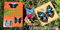 Motýľ - lapbook, aktivity inšpirované Montessori (a kopec materiálov na stiahnutie) Montessori Activities, Learning Activities, Ways Of Learning, Kids Crafts, Inspiration, Biblical Inspiration, Inspirational, Inhalation, Baby Crafts