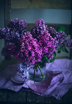 2 different kinds of purple lilacs - beautiful & fragrant