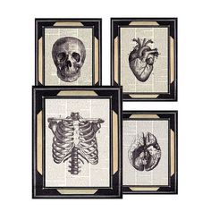 Dictionary print HUMAN ANATOMY art prints anatomical skull HEART brain ribcage medical science doctor office clinic decor 8x10 black white