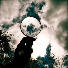 Unique Examples of Magnifying Glass Photography