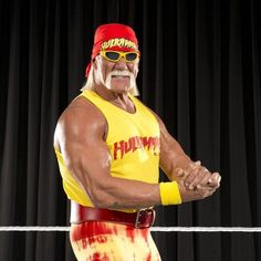 My Thoughts on Hulk Hogan's Racist Comments