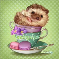 animal Diamond Painting Embroider Hedgehog in the cup DIY Square or round Cross stitch Kitchen home decoration Alphabet, Cross Stitch Kitchen, Household Cleaners, 5d Diamond Painting, Home Wall Decor, Amazon Art, Beavers, Sewing Crafts, Hedgehog