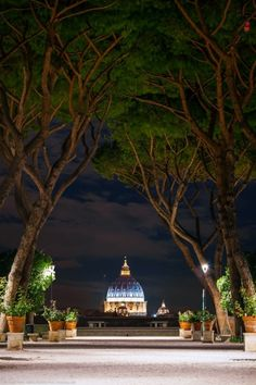 Vie of St. Peter's dome from the Garden of the Orange Trees, Aventino. Learn.Live.Love. Rome. www.afriendinrome.it