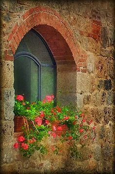 Arched window ... love the old world look... brick and stone ... geranium flowerbox ... Monteriggioni, Tuscany