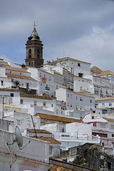 Spain, Andalucia, Cádiz, Alcalá de los Gazules