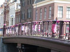 Wildbreien in Haarlem