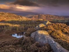 Bright and Breezy on Holme Fell by tdove77
