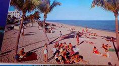 Great Old Florida Postcards/Deltiology  (Part-2)