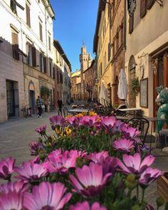 7 best nature images tuscany tuscany italy italia rh pinterest com
