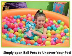 Ball Pets the Stuffed Animal Ball