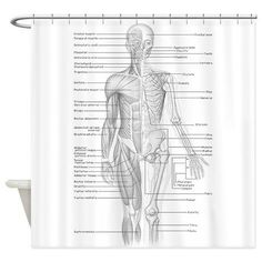 Human Anatomy Shower Curtain | 31 Delightfully Weird Gifts For All The Medical Nerds In Your Life
