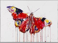 Butterfly (Giclee Signed Limited Edition of by Dave White high quality art print / poster, plus art prints and posters by hundreds more famous artists. Drip Art, Drip Painting, Watercolor Paintings, Watercolour, Butterfly Painting, Butterfly Art, White Butterfly, Butterflies, Surrealism Sculpture