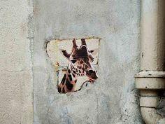 Paris, giraffes around the city (7)