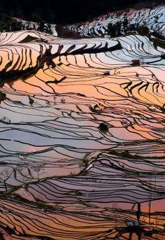 Yuanyang County ,Yunnan province:
