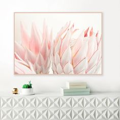 A beautiful King Protea print with soft blush pink and white tones. The perfect contemporary floral print for your beautiful home. Protea Art, Protea Flower, Flower Art Images, Flower Photos, Blue Flower Wallpaper, Nursery Decor, Bedroom Decor, Baby Bedroom, Bedroom Ideas