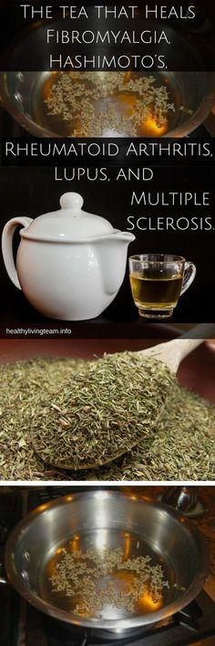 The Tea That Heals Fibromyalgia, Hashimoto's, Rheumatoid Arthritis, Lupus, and Multiple Sclerosis - Healthy Living Team