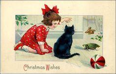 queridos gatos: Dezembro 2008
