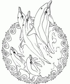 Realistic Bottlenose Dolphin Coloring Pages for adults Enjoy