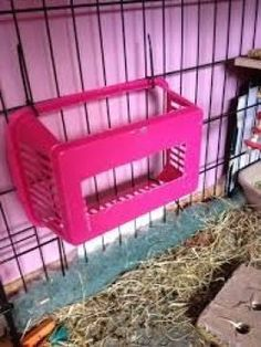 Did you know hay is a key part of a Guinea pig's diet? They need it for digestion and tooth growth. So here is an easy way to make a Guinea pig hay box! Bunny Cages, Rabbit Cages, Rabbit Toys, Pet Rabbit, Rabbit Cage Diy, Diy Bunny Cage, Rabbit Feeder, Diy Guinea Pig Cage, Pet Guinea Pigs