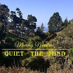 Mondays, for most of us, are busy days of catching up, getting it together, and being productive. If this sounds like you, add 15 minutes of quiet time to your To Do List, whether it be restorative yoga, meditation, or just a few minutes of sitting outside in silence. It's necessary to give your brain a break too. Happy Mantra Monday. #calocals - posted by Lucy Soto, CMT https://www.instagram.com/blackstone_ps - See more of Big Sur, CA at http://bigsurlocals.com