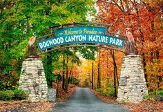 Discover the Ozarks at Dogwood Canyon Nature Park