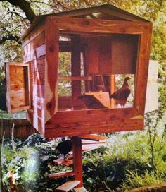 Reinventing The Chicken Coop, Book Review & Giveaway!