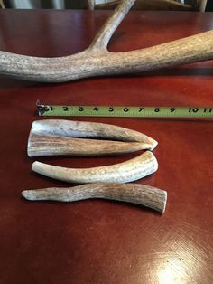 LARGE Elk/Deer **NATURAL SHED** Antler Premium Dog Chews