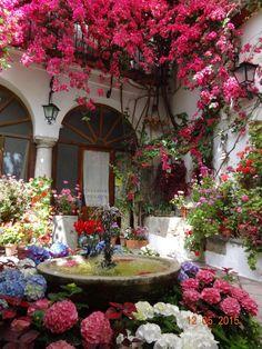 Cordoba, Cordoba, Spain - La fiesta de los patios - a citywide...