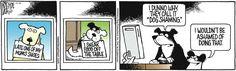 No shame here! | Read The Other Coast #comics @ www.gocomics.com/theothercoast/2014/11/13?utm_source=pinterest&utm_medium=socialmarketing&utm_campaign=social-pin | #GoComics #webcomic #dogs