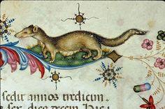 256. Chambéry, Bibl. mun., ms. 0004, f. 455 - vue 3