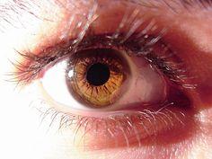 Nutrientes y vitaminas que cuidan nuestros ojos