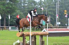 Auction item 'Dana Cooke Equestrian lesson (2016/2017)' hosted online at 32auctions. Auction Items, Equestrian, Horses, Animals, Animais, Animales, Animaux, Horseback Riding, Animal