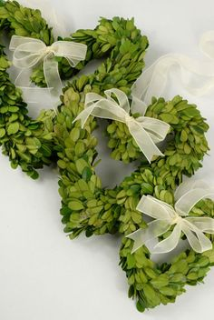 3 sweet Boxwood wreaths.  Hang them at Christmas and leave them up through Valentine's Day!