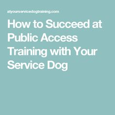 How to Succeed at Public Access Training with Your Service Dog