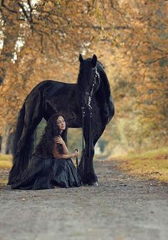 Black horse...woman in black dress