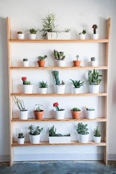 32 Ideas indoor container garden ideas house plants for 100 Beautiful DIY Pots And Container Gardening Ideas in . Small Backyard Gardens, Indoor Garden, Home And Garden, Indoor Balcony, Gravel Garden, Garden Oasis, Garden Fun, Large Backyard, Garden Pool