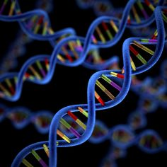 Poor Methylation Prompts Of Diseases: MTHFR Simplified. of us has a methylation problem. Thankfully, methylfolate can be taken as a supplement! If you have an MTHFR snp you may need to take a supplement. What A Wonderful World, Adhd Inattentive Type, Dna Repair, Spine Health, Ankylosing Spondylitis, Cancer Cure, Autoimmune Disease, Breast Cancer, Food Science
