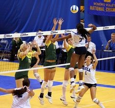Volleyball Statistics Made Easy