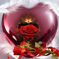 Hearts and Roses Love You Unconditionally, Hearts And Roses, I Love You, My Love, Love Wall, Love Rose, Beautiful Roses, True Love, My Best Friend