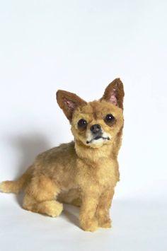 plusch dog portrait