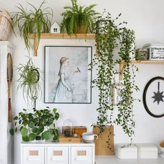45 Rooms That'll Inspire You To Decorate With Plants - Nikola Kosterman House Plants Decor, Plant Decor, Hanging Plants, Indoor Plants, Indoor Gardening, Potted Plants, Cactus Plante, Romantic Bedroom Decor, Deco Nature
