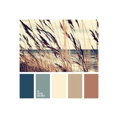 Color Palette #1706 ❤ liked on Polyvore featuring home and home decor