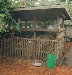 Keeping rabbits over your compost pile--heat for the rabbits, which in turn fuel your compost pile. ;)