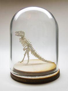 Carbon dating dino bones dilo
