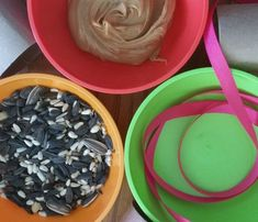 Care To Recycle® How To Make Quick Bird Seed Feeders With Toilet Paper Rolls
