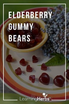 Elderberry Gummy Bear Recipe