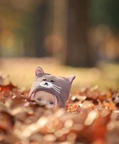 🍁 Почти затерялся котик в листве ....